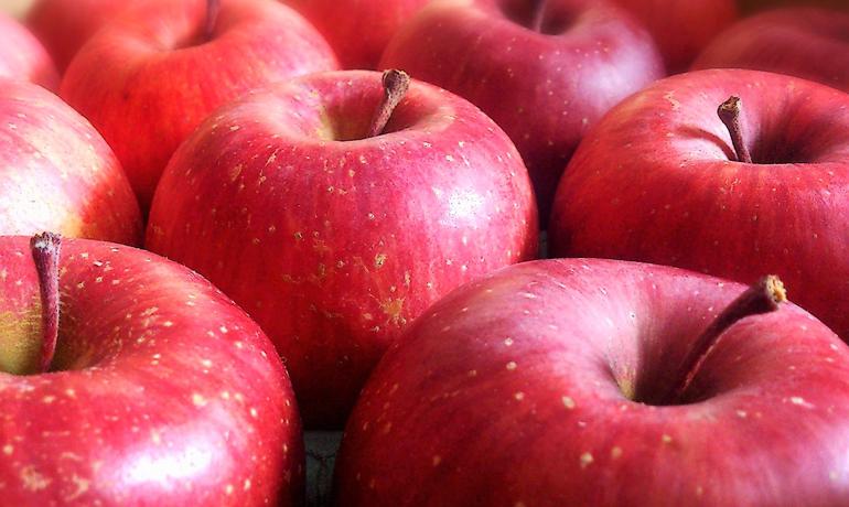栄養豊富!おいしいリンゴの選び方
