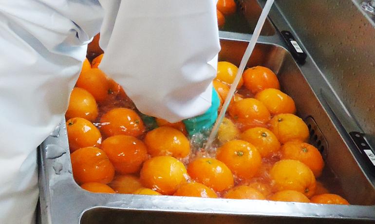 オレンジの香りに包まれて