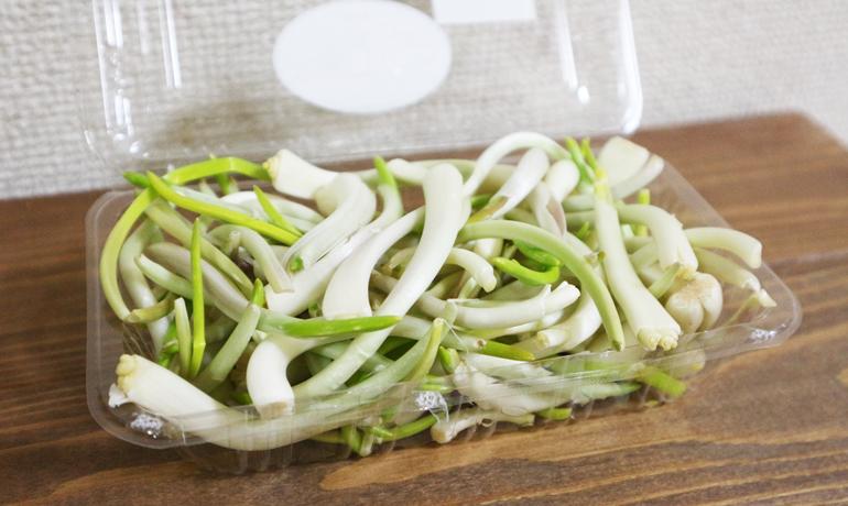 早春の訪れ・秋田の郷土野菜「ひろっこ」