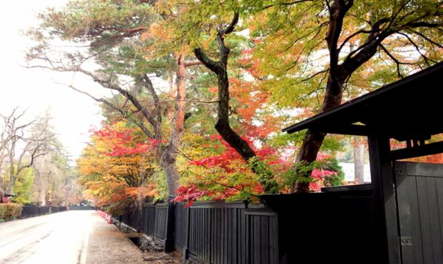角館の秋イベント&秋田県の紅葉スポット