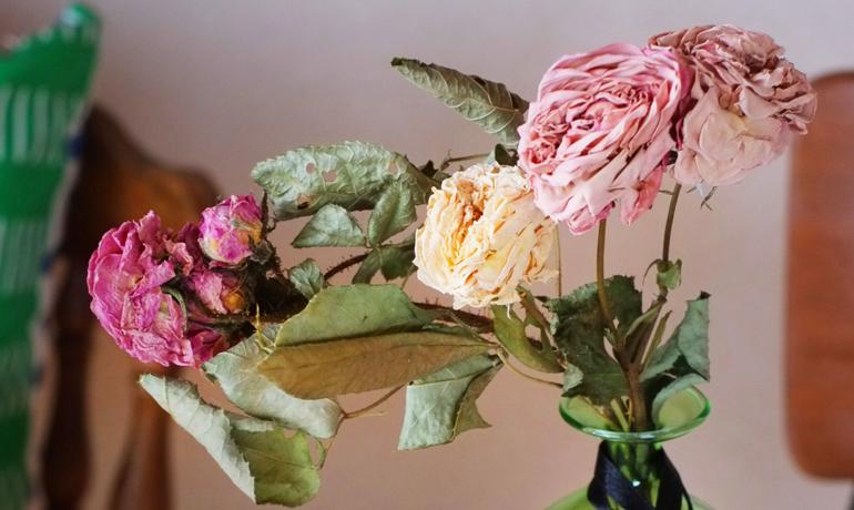 簡単!薔薇のドライフラワーの作り方