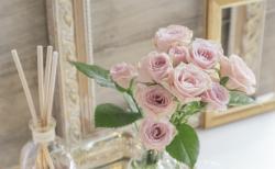 みんなに愛されるバラの香りの種類